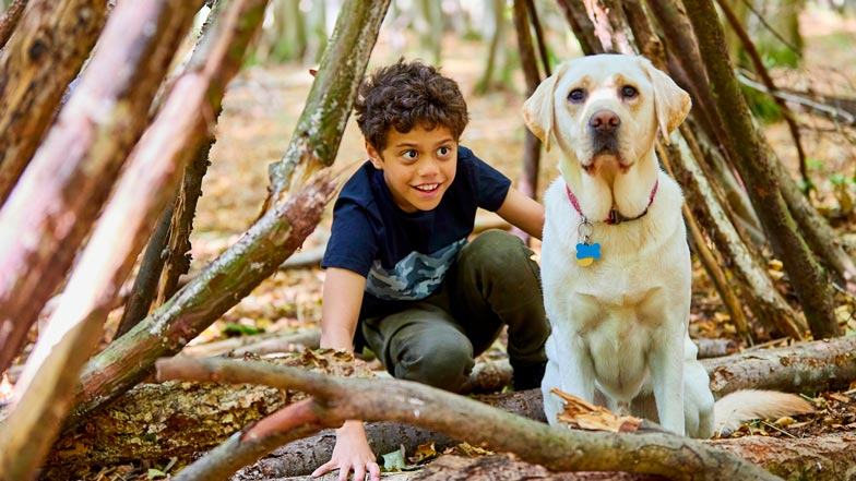 Jago and buddy dog Sam sit and play together in the woodland
