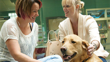 Two women smiling and talking as a guide dogs sits with them