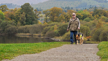 Guide dog owner walking with his guide dog by a lake