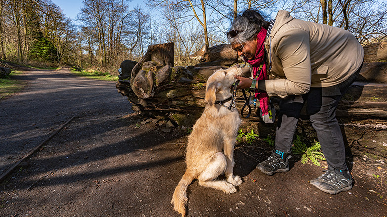 Volunteer puppy raiser and guide dog puppy together on a walk