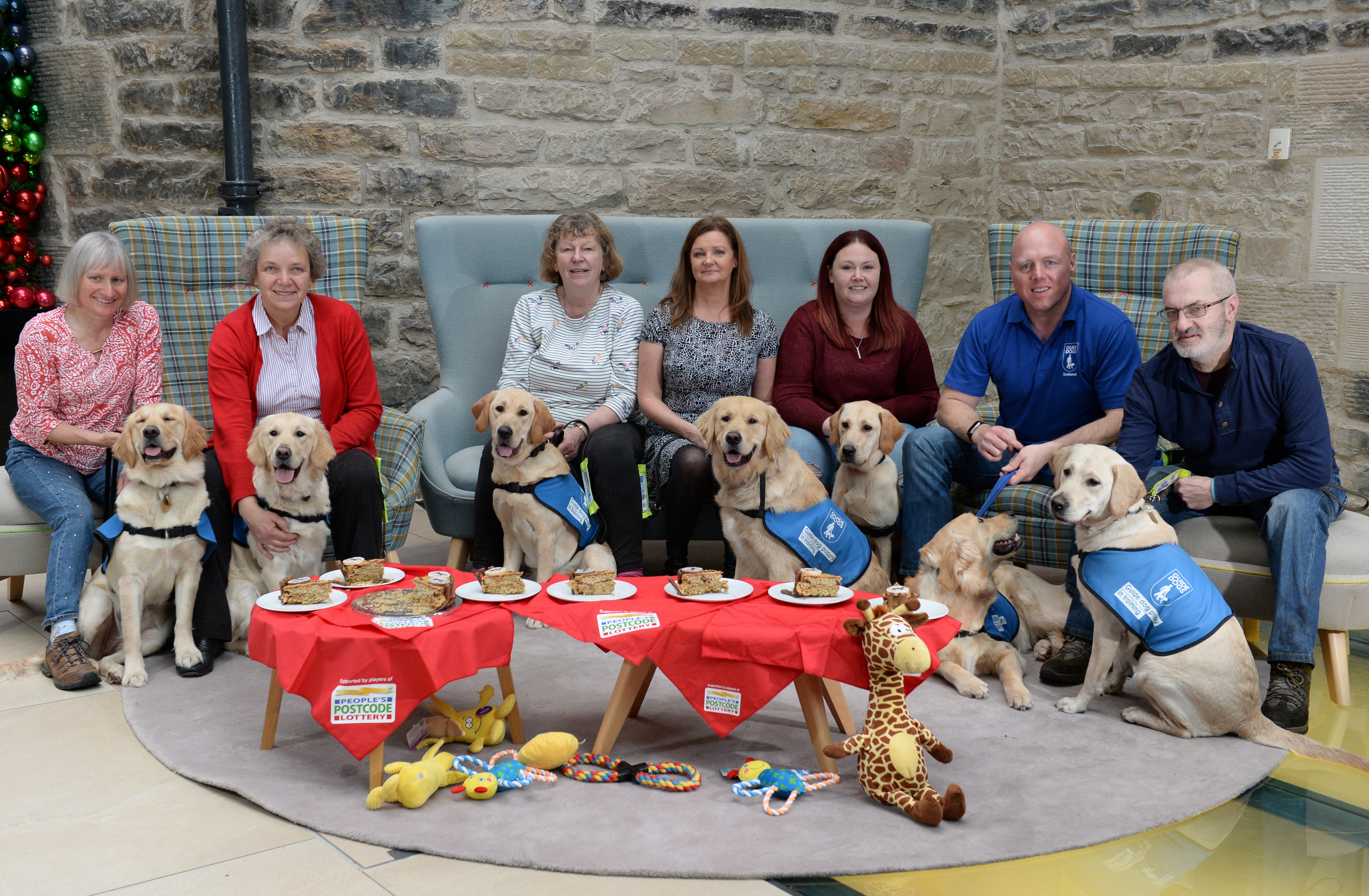 Seven of the People's Postcode Lottery player-funded puppies with their puppy walkers at their first birthday party
