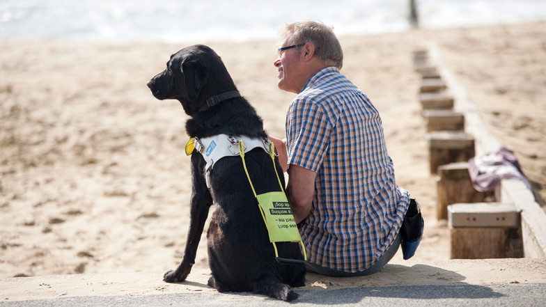 A guide dog and owner sitting on the beach together