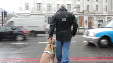 Guide dog owner waiting to cross at flat road