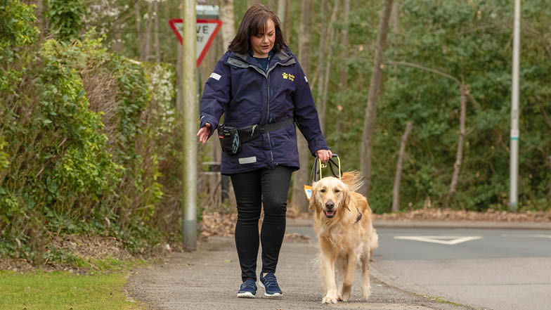 Bailey and his Trainer walking along a pavement