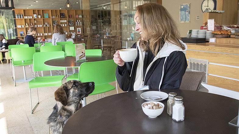 Jill having a coffee and Fletcher watching