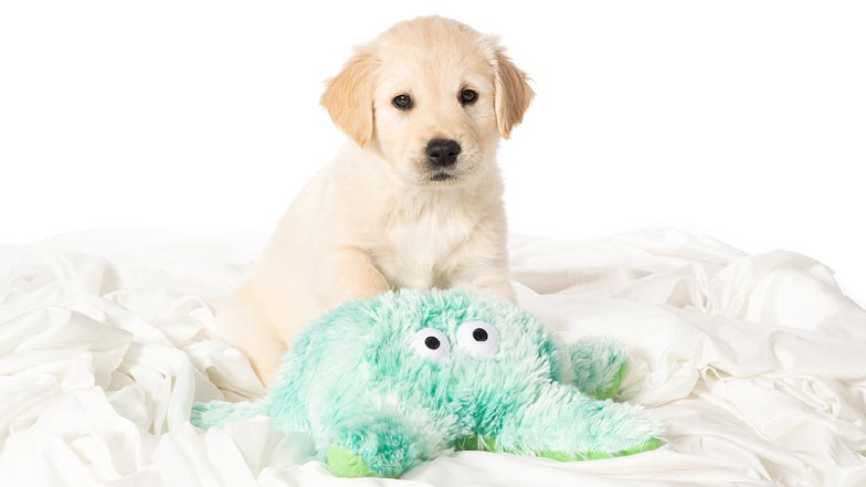 Kevin sitting with his green octopus toy