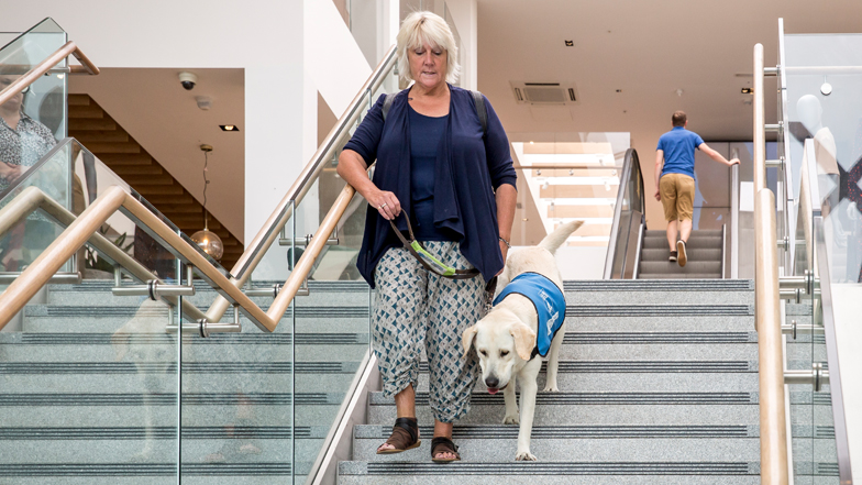 Spirit and Jill walking down the stairs