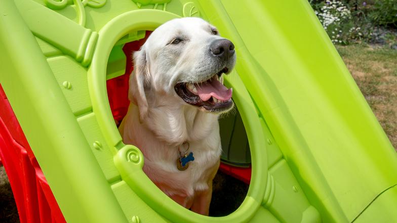 Spirit sitting in his playhouse