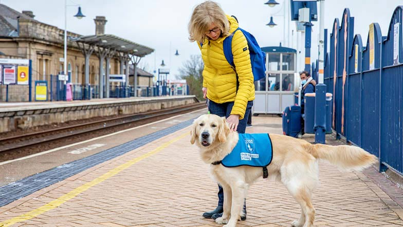 Sprout and his Puppy Raiser on a train platform