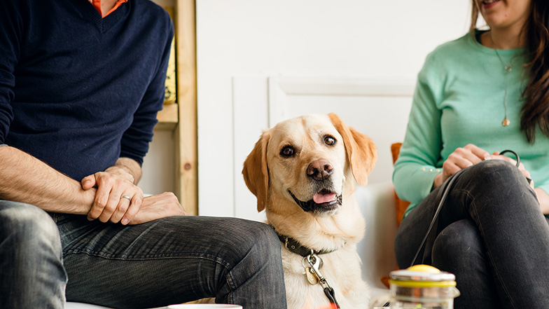 two-people-in-cafe-with-labrador-Guide-Dogs